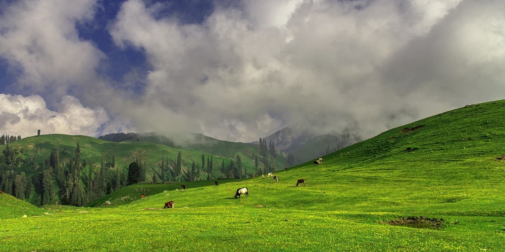 3 days naran valley tour