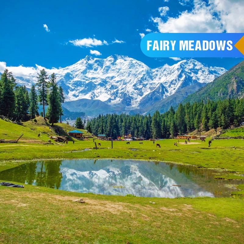 fairy meadows tours 2021