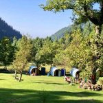 sharan forest in kaghan valley